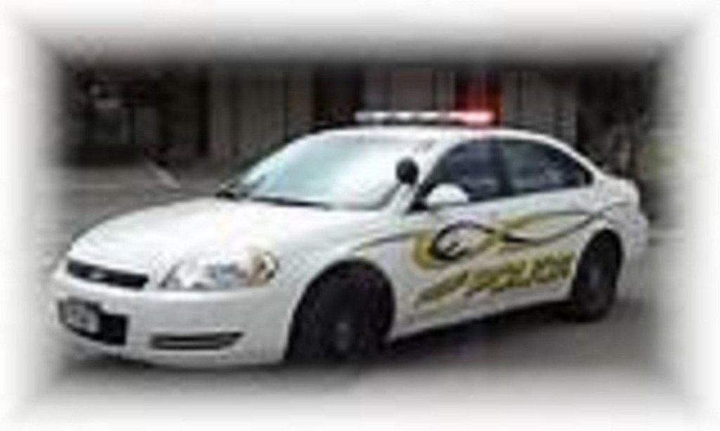 Price-Police-car.jpg