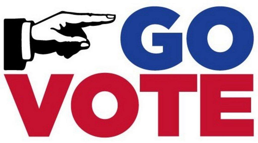 go-vote.jpg