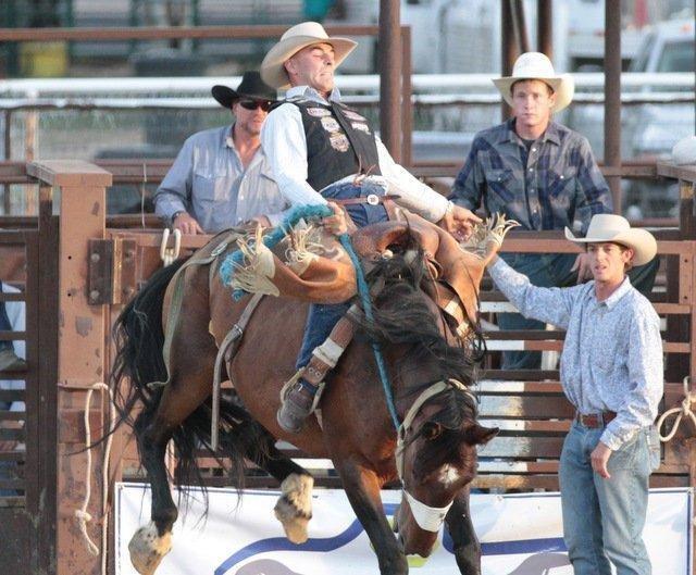 saddle-bronc.jpg