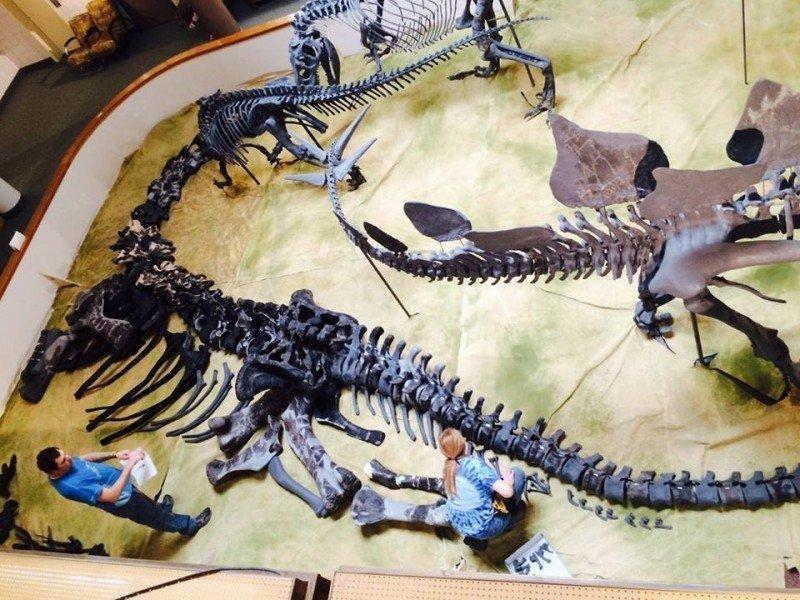 Dinosaur-Pit.jpg