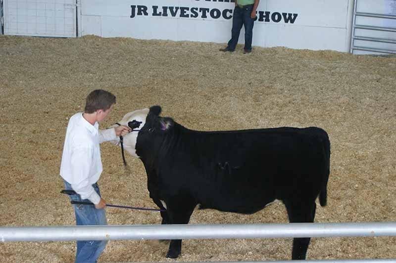 Livestock-Show.jpg