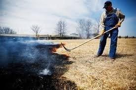 farmer-burn.jpg