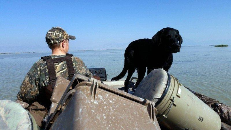 david_stallings_9-20-2014_young_hunter_with_boat_and_dog.jpg