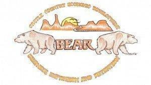 bear300x170.jpg