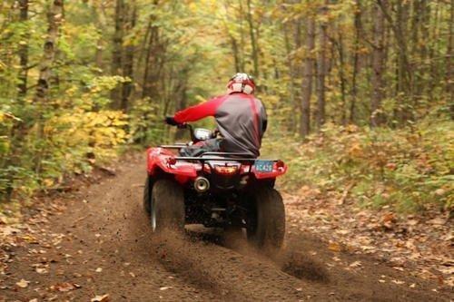 ATV-Riding-Forest.jpg