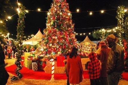 christmas-celebrations.jpg