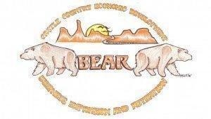 bear300x170-1.jpg