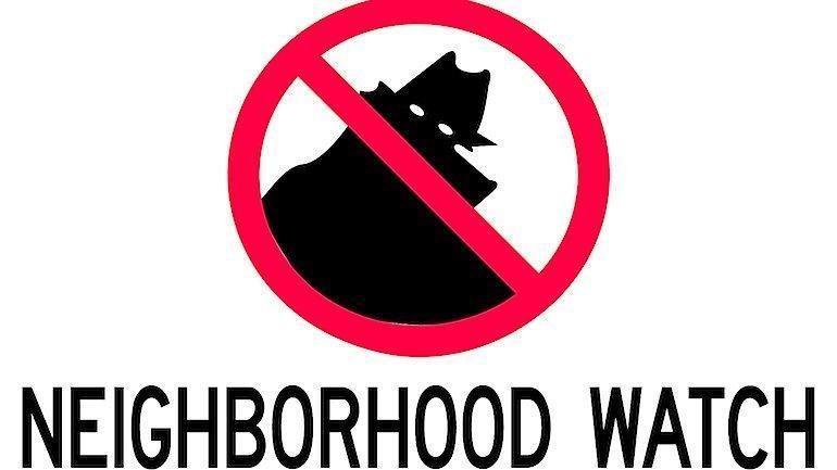 neighborhood-watch-1.jpg