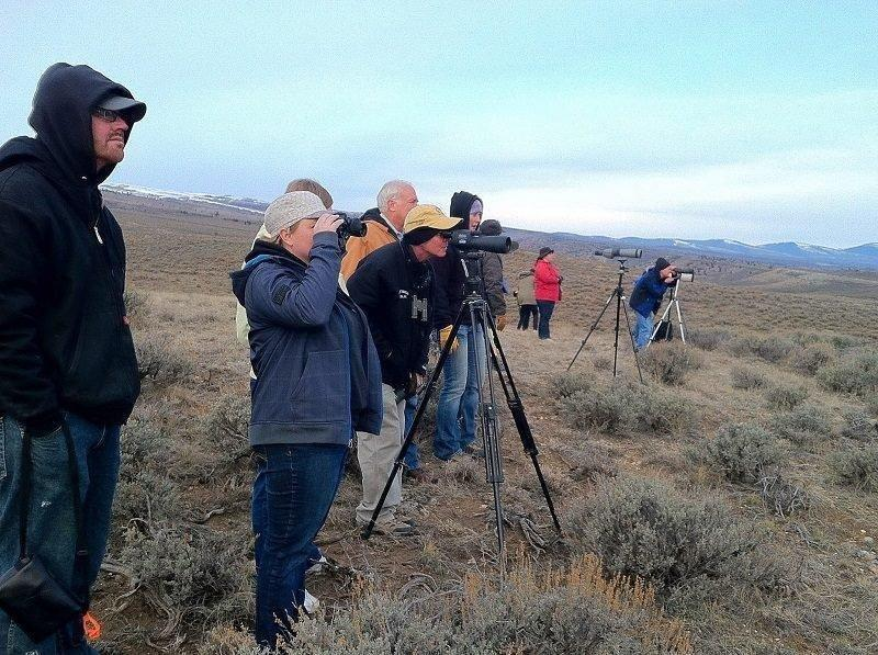 brent_4-5-2014_viewers_watch_sage_grouse_at_Emma_Park.jpg