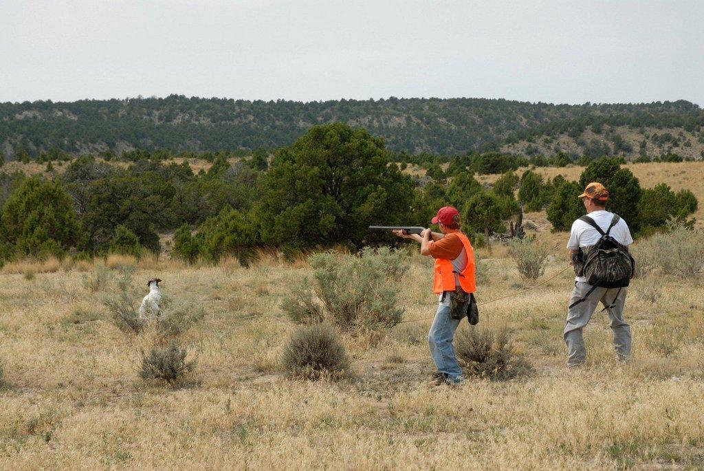 brent_9-8-2007_young_hunter_aims_at_chukar_with_dad_and_dog.jpg