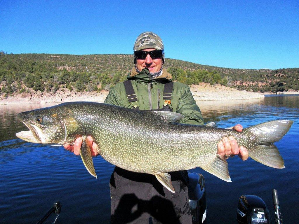 ryan_mosley_12-29-2016_big_lake_trout_at_Flaming_Gorge_Reservoir.jpg