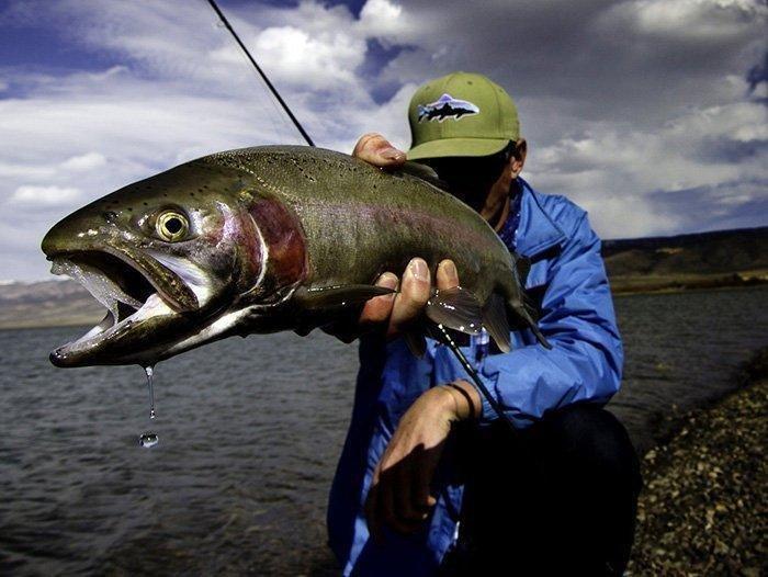 4-19-18_fish.jpg