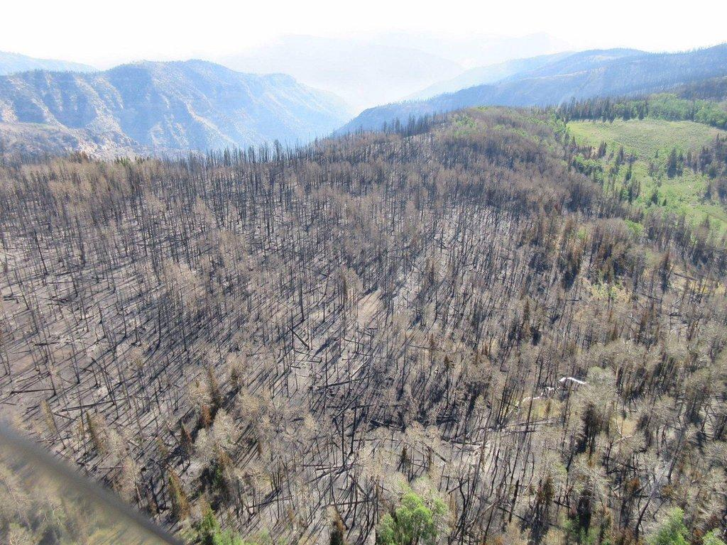 Steep-slopes-deep-canyons-characterize-Trail-Mtn-Burn.jpg
