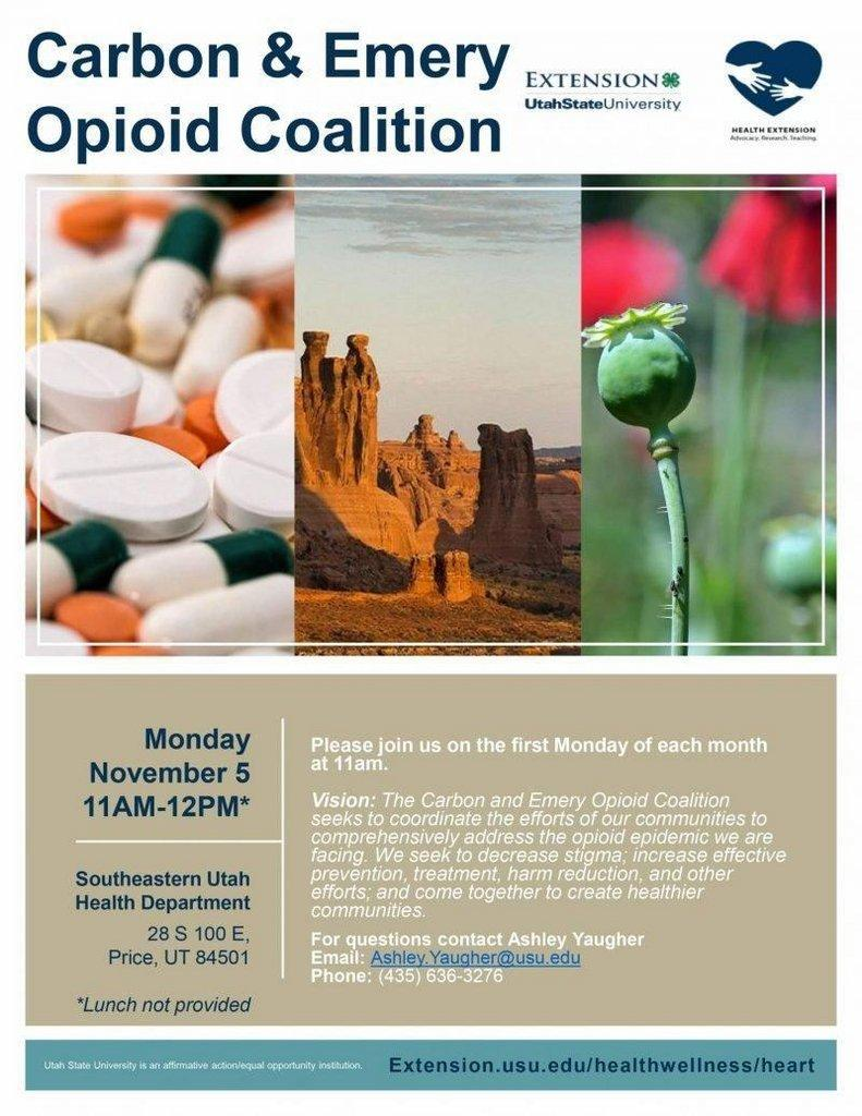Carbon-Emery-Opioid-Coalition-Flyer-First-Meeting-November-5th-1.jpg
