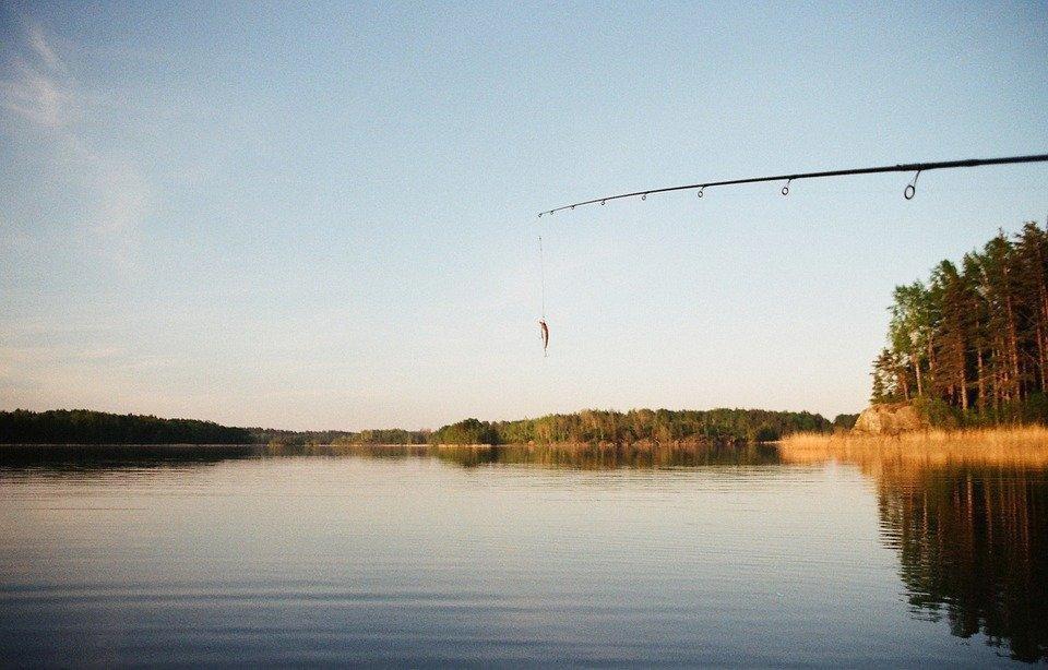 fishing-731135_960_720.jpg