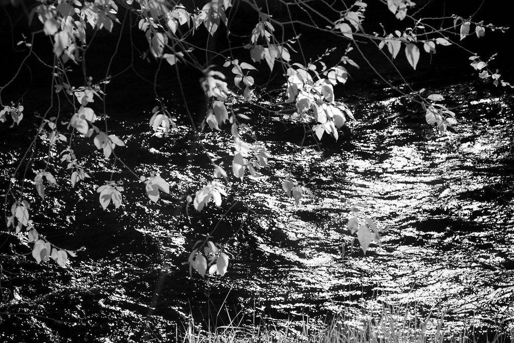 Riverwalk-Meditations-3.jpg