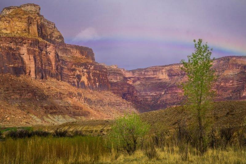 desert-rainbow_orig-800x533.jpg