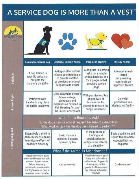 2018_CCI_Companion_Animals_Definition_Chart_3-1.jpg