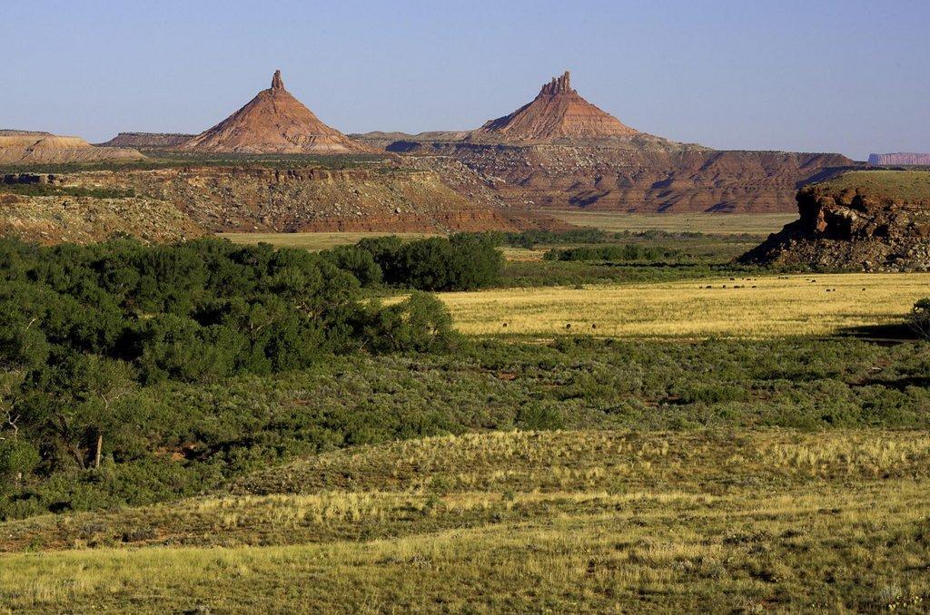 Indian_Creek_in_Bears_Ears_National_Monument-e1555538288566.jpg