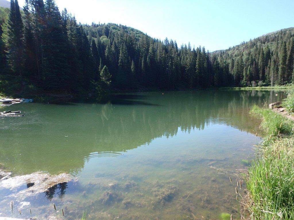 Oowah-Lake-3.jpg