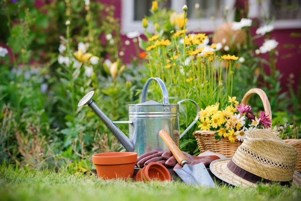 garden-time-scaled.jpg