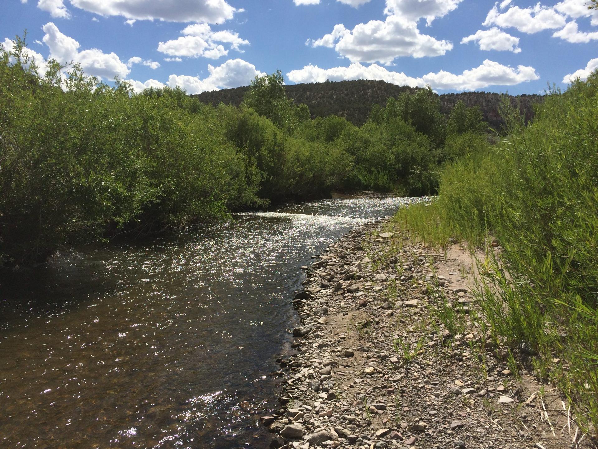 Clear-Creek-scaled.jpg
